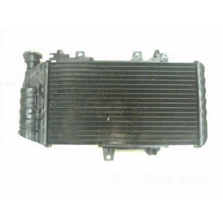 RADIADOR F 800 ST 06-07