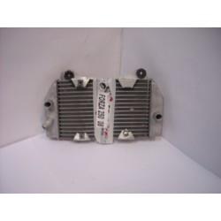 RADIADOR FORZA 250 05-08
