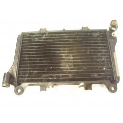 RADIADOR GPX 750