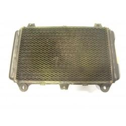 RADIADOR GPZ 600