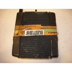 RADIADOR MAJESTY 250 96-01