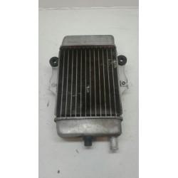 Radiador Honda Dylan 125