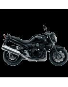 BANDIT 650 2010-